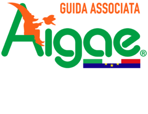 Logo of Aigae