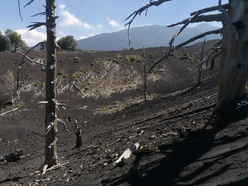 Three burned by the lava of etna
